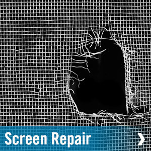 screen-repair